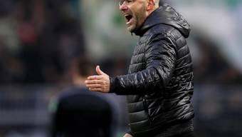 Hat kritische Tage hinter und vor sich: Dortmunds Trainer Peter Bosz