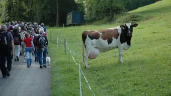 az-Wanderung von Hellikon nach Wittnau
