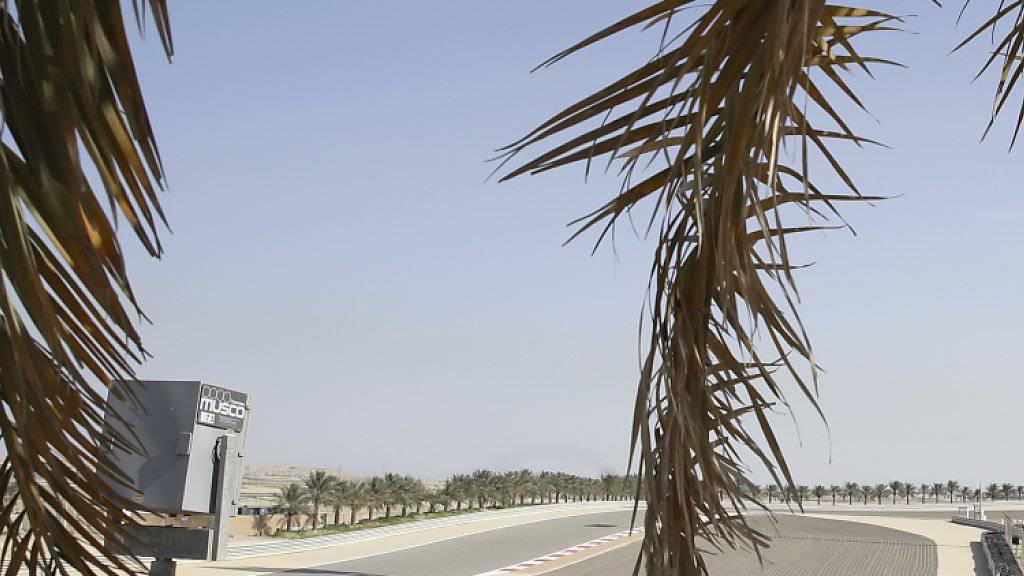 Am Sonntag findet in der Wüste am Persischen Golf zum 15. Mal ein Formel-1-GP statt