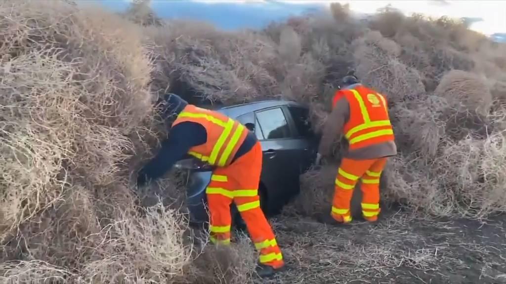 Tumbleweed begräbt Autos unter sich