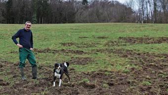 Auf Käsers Wiesen zeigen sich die Spuren der Wildschweine.