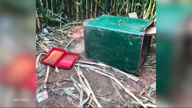 Spaziergänger findet aufgebrochenen Tresor im Maisfeld