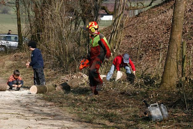 Fachmann Viktor Scheidegger hat gesägt, jetzt kümmern sich Kinder um das Holz