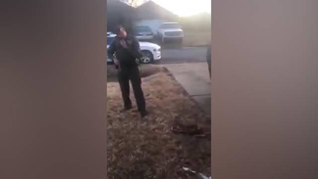 US-Polizist schiesst Chihuahua ins Gesicht