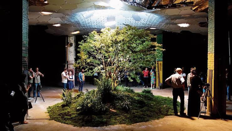Einst U-Bahn-Station, bald eine grüne Wohlfühloase im Untergrund? Das Projekt Lowline in New York will unbenutzte Bahntunnels zum Park umfunktionieren. Erste Tests mit Pflanzen waren erfolgreich.
