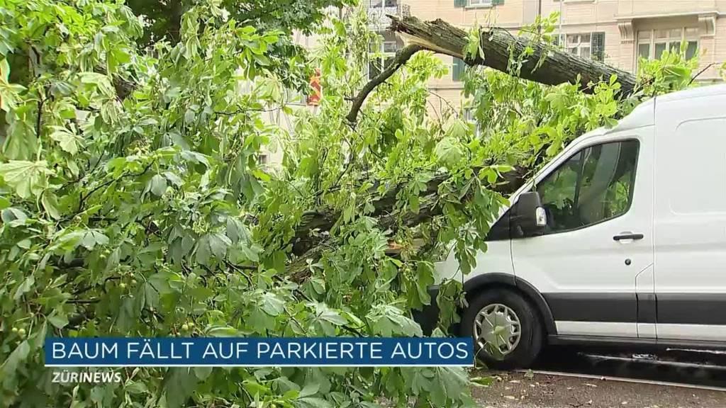 Wegen Gewitter: Baum blockiert Talstrasse