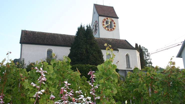 Die reformierte Kirche Weiningen ist schon seit langem ein beliebter Nistplatz für Turmfalken.  zim