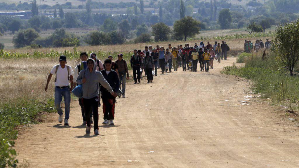 Tausende Migranten überquerten in den vergangenen Tagen die Grenze von Mazedonien nach Serbien (Bild), nach zwei Tagen erreichen nun die ersten die Grenze zu Ungarn.