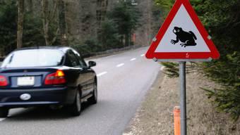 Für wandernde Amphibien ist der Strassenverkehr in der Laichzeit eine grosse Gefahr.