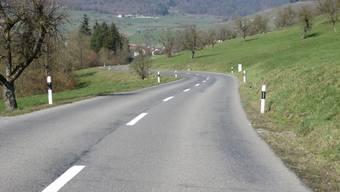 Dieser Strassenabschnitt zwischen Wil und Hottwil soll ausgebaut werden.zvg
