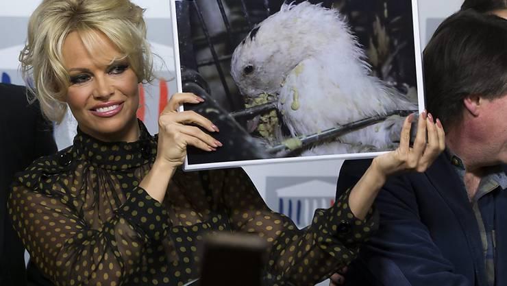 """Hält den Franzosen den Spiegel vor: """"Bawatch""""-Star Pamela Anderson kämpft im Parlament in Paris gegen Stopflebern."""