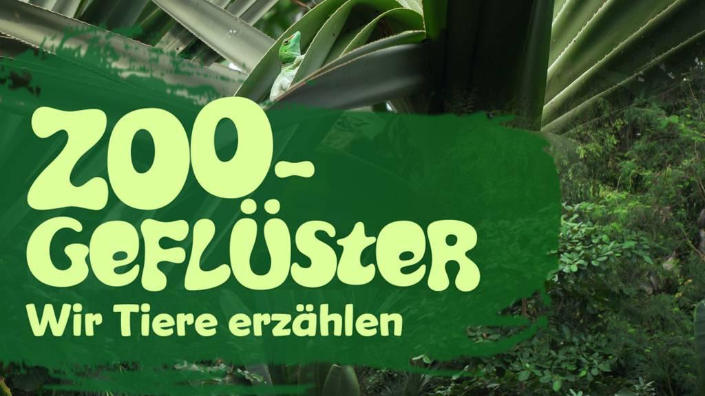 Zoogeflüster – Wir Tiere erzählen