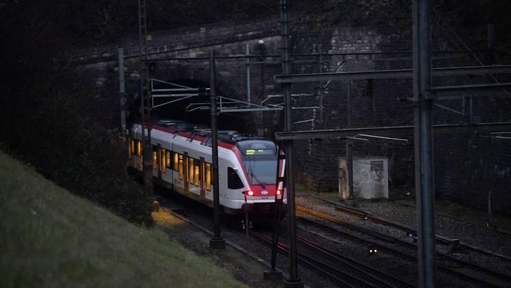 Neben dem Hausenstein-Basistunnel hier bei Tecknau braucht es einen dritten Juradurchstich. Dazu hat sich die Schweiz gegenüber Deutschland verpflichtet.