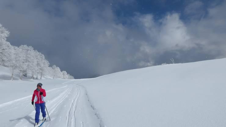 Bei genug Schnee täglich offen.