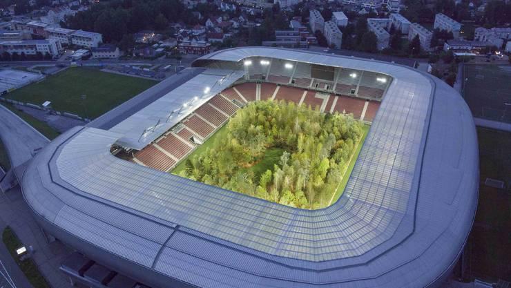 Urtümliche Kraft: Für zwei Monate steht der Wald im Wörthersee-Stadion Klagenfurt. Bild: Unimo, E. Fradin, APA/Enea,