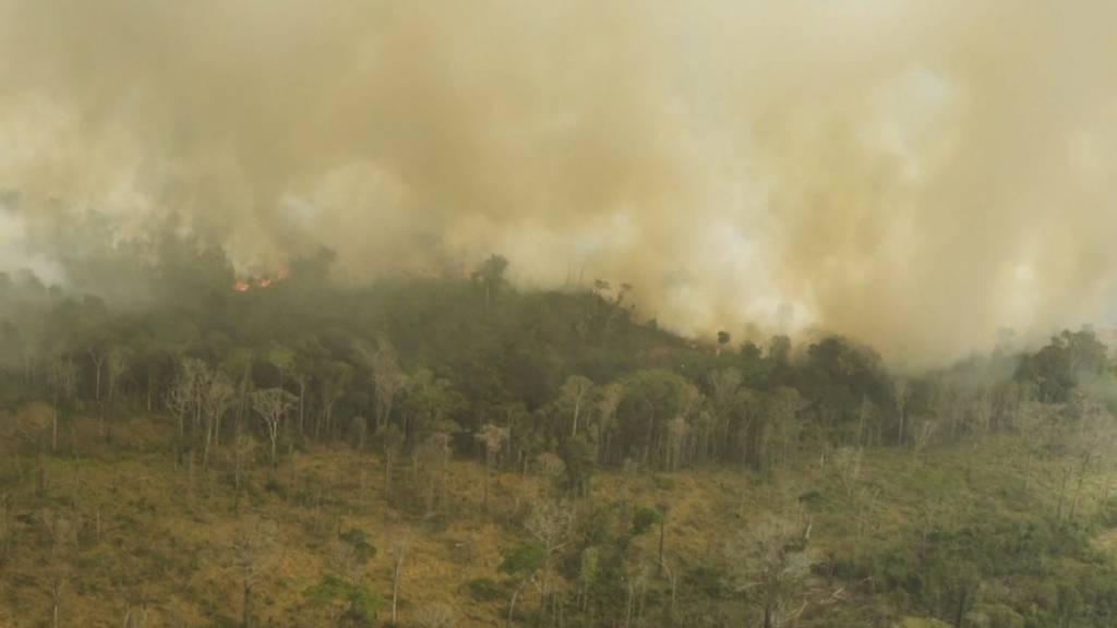 Brasilien lehnt von G7 zugesagte Amazonas-Soforthilfe ab