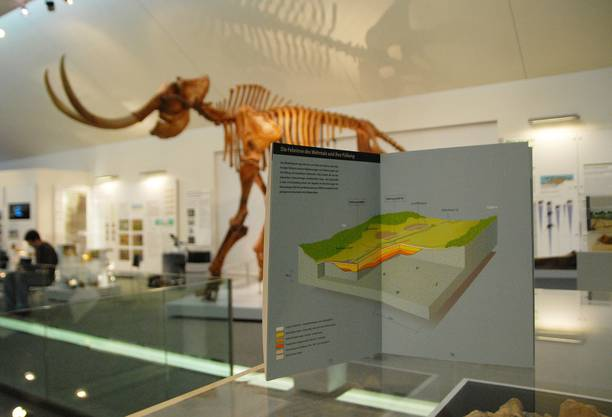 Mammutmuseum Niederweningen
