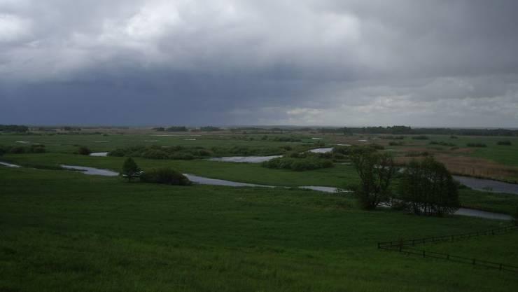 Wo man hinblickt, schimmert Wasser des mäandrierenden Flusses. Der Rest ist meist Sumpf.