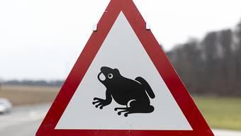 Der Schweizerische Tierschutz fordert Autofahrende zur Vorsicht wegen der Amphibien-Wanderung auf. (Archivbild)