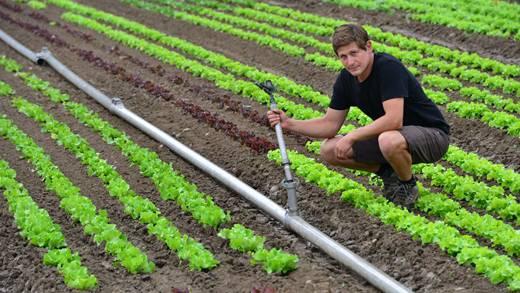 Bewässern unter freiem Himmel ab Alurohr mit Sprinklerversatz kommt bei Roman Grob ebenso zur Anwendung wie die Tropfbewässerung.