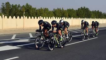 In diesem Jahr werden die WM-Titel in Katar vergeben