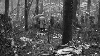 Das Flugzeug hatte Dutzende Bäume abrasiert, war in den Wald gestürzt und wurde durch den Aufprall in Tausende Teile zerrissen.