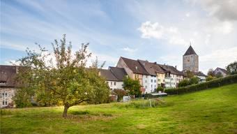 Kaiserstuhl zählt laut «Schweizer Illustrierter» zu den 50 schönsten Dörfern der Schweiz. Der Obere Turm (r.) überragt das Städtchen und ist ein Rest der mittelalterlichen Stadtbefestigung.