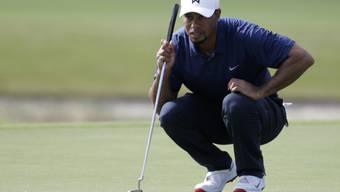 Tiger Woods voller Konzentration auf dem Green