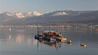 Spektakulär: Das Schweissschiff auf dem Zürichsee verbindet die Teilstücke und lässt sie mit Schwimmkörpern ins Wasser.