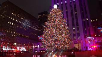 Drei, zwei eins: In New York ist die Weihnachtszeit eröffnet worden.