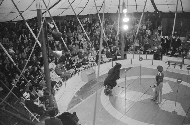 Der Circus Nock 1961 in Solothurn.
