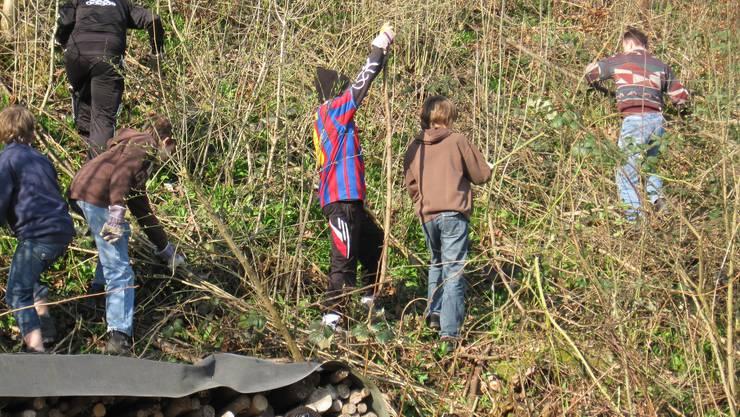 Schülern säubern den Waldrand oberhalb der Schule