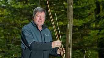 Oberförster Christoph Fischer mit einer jungen, vom Pilz befallenen Esche. Das Holz hat sich bereits braun verfärbt.
