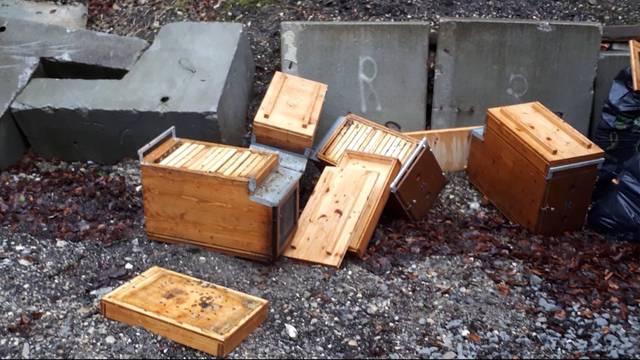 Imker muss einige seiner geklauten Bienenvölker nun selbst töten