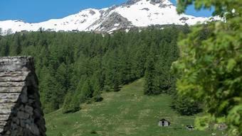 Bis zu den Grenzen des Walserdorfs Bosco Gurin könnte sich der Nationalpark im Locarnese einmal erstrecken.