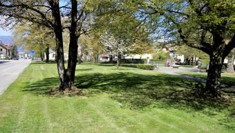 Der neue Fussweg (Velo gestattet) führt zwischen den Bäumen im Vordergrund hindurch.