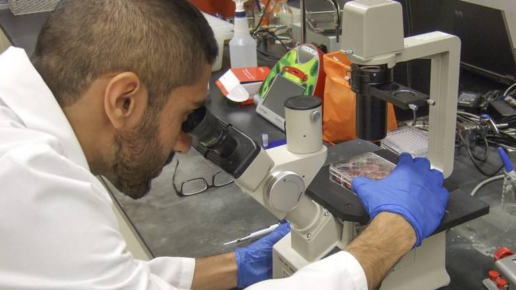 Zwei mögliche Impfstoffe gegen Ebola sollen in der Schweiz getestet werden.