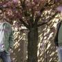 Philipp Kathriner und Kurt Egli (von links) veröffentlichen ihre zweite gemeinsame EP namens «Umami».