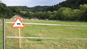 Die «Chänelmatt» in Schmiedrued-Walde wird nicht eingezont werden.cfü