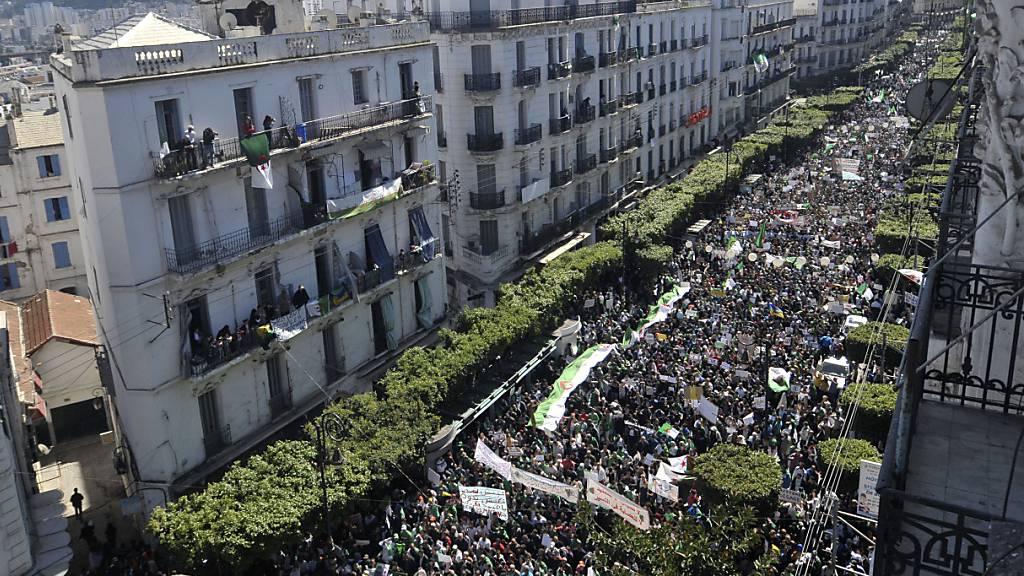 Zehntausende Algerier protestieren gegen Präsidentschaftswahl