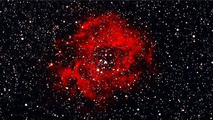 Rosettennebel NGC 2237 im Sternbild Einhorn, aufgenommen von Hugo Blikisdorf, Mitglied der Vereinigung Sternwarte Cheisacher. AZ
