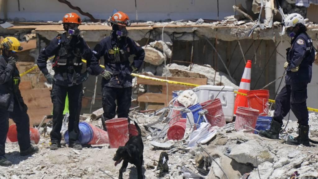 Ein Hund unterstützt Such- und Rettungskräfte die an der Unglücksstelle des eingestürzten Gebäudes «Champlain Towers South Condo» im Einsatz sind. Mehr als eine Woche nach dem Teileinsturz eines Wohnkomplexes in Florida sind zwei weitere Leichen gefunden worden – darunter ein siebenjähriges Mädchen.