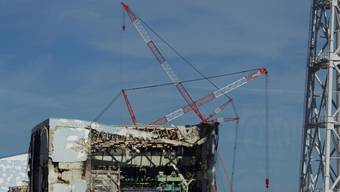 In der Atomruine Fukushima kam es zu einer neuen Panne (Archiv)