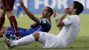 Luis Suarez schlug seine Zähne in die Schulter von Giorgio Chiellini.