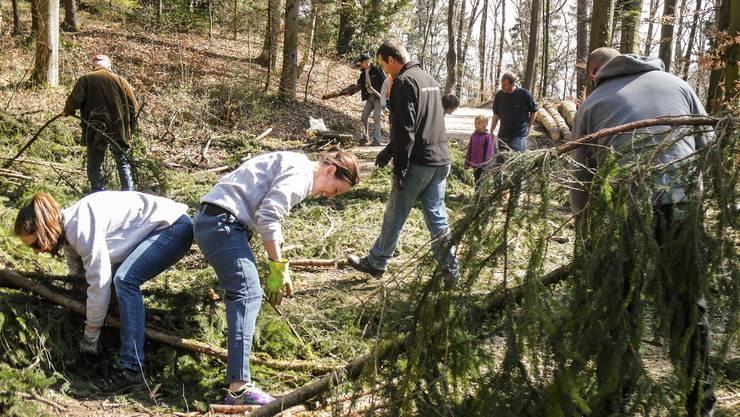 Gross und Klein sind am Holzsammeln jeweils im Einsatz.