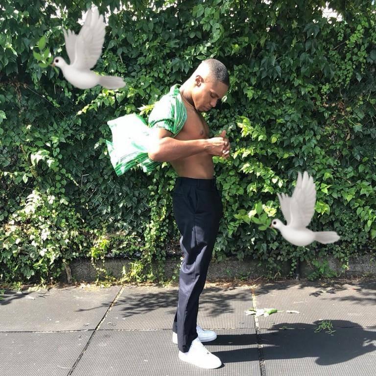 Der Herr der Tauben Avery Wilson