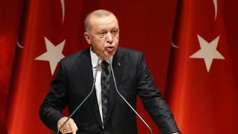 Die Jagd nach Feinden nimmt kein Ende: der türkische Präsident Erdogan hat den Putschversuch gegen ihn - von Kritikern auch als Möchtegern-Sultan verspottet - noch immer nicht verwunden.