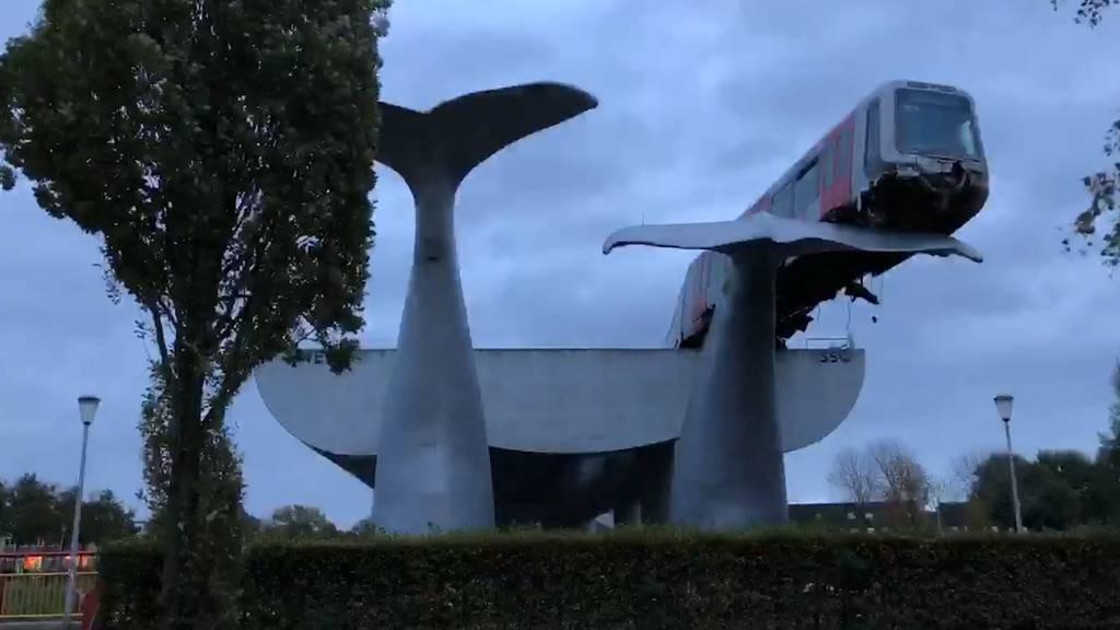 Niederlande: Metro hält ungewollt auf Walfisch-Flosse