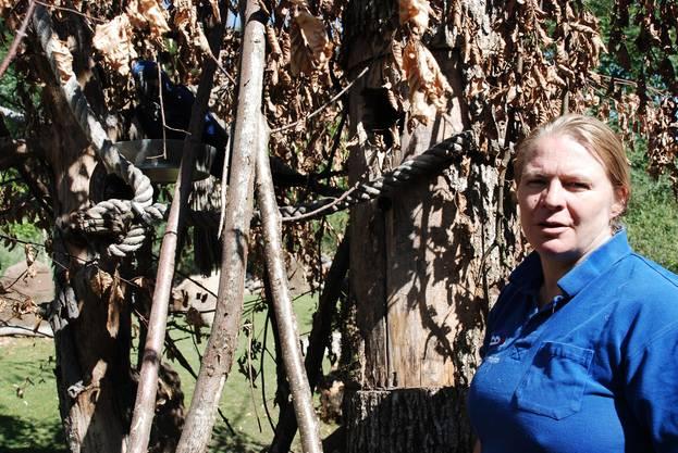 Bettina Aeschbach arbeitet seit 23 Jahren als Tierpflegerin im Zoo
