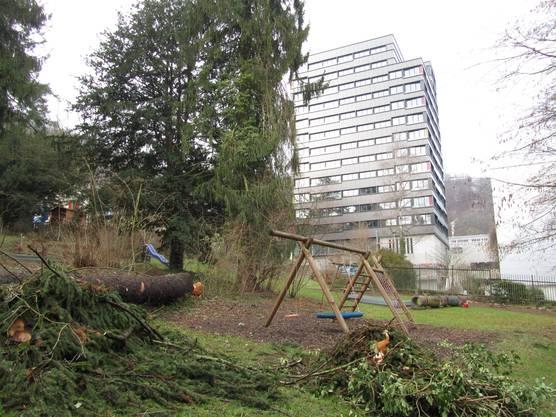 Noch sieht es im Park sehr trostlos aus. Doch mit der Sanierung wird sich das bald ändern.
